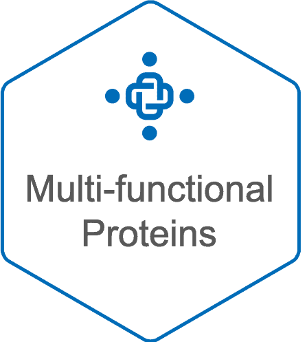 Pan-cancer Solutions Multi-functional Proteins